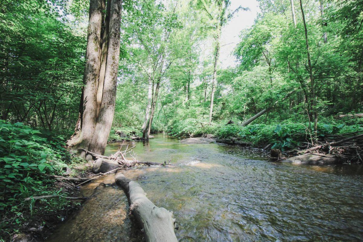 alt=cherry creek in winona lake